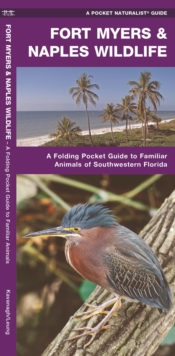Fort Myers & Naples Wildlife : A Folding Pocket Guide to Familiar Animals of Southwestern Florida, Pamphlet Book