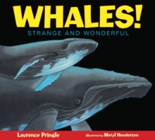 Whales!, Paperback / softback Book