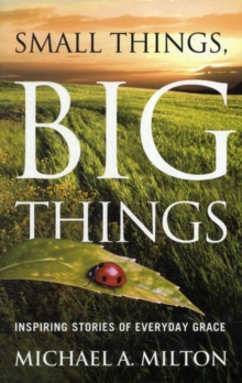 Small Things, Big Things : Inspiring Stories of Everyday Grace, Paperback / softback Book