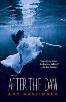 After the Dam, Paperback Book