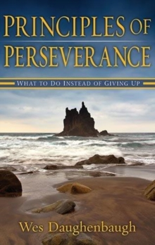 Principles of Perserverance : What to Do Instead of Giving Up, Paperback Book
