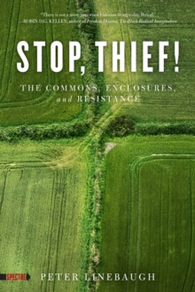 Stop, Thief! : The Commons, Enclosures, And Resistance, Paperback / softback Book
