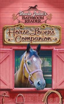 The Horse Whisperer Epub