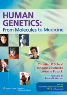 Human Genetics : From Molecules to Medicine, Paperback / softback Book