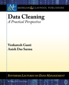 Data Cleaning : A Practical Perspective, Paperback / softback Book