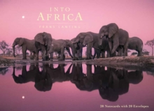 Into Africa: Blank Boxed Notecards, Hardback Book