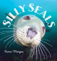 Silly Seals, Hardback Book