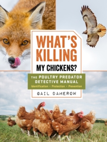 What's Killing My Chickens?: The Poultry Predator Detective Manual, Paperback / softback Book