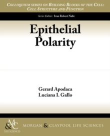 Epithelial Polarity, Paperback / softback Book