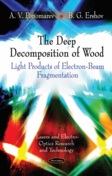 Deep Decomposition of Wood : Light Products of Electron-Beam Fragmentation, Paperback Book