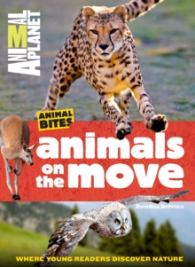Animal Planet Animals on the Move, Paperback / softback Book
