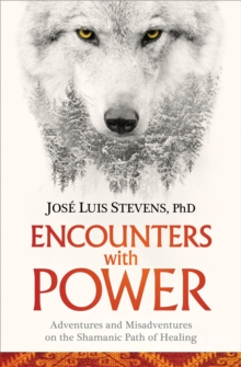 Encounters with Power : Adventures and Misadventures on the Shamanic Path of Healing, Paperback / softback Book