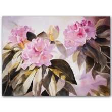 Notecard Boxes - Fine Art Botanicals, Cards Book