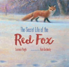 The Secret Life of the Red Fox, Hardback Book