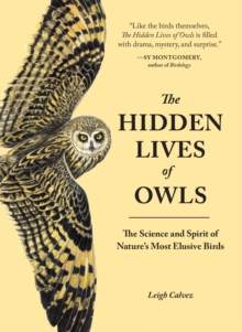 The Hidden Lives Of Owls : The Science and Spirit of Nature's Most Elusive Birds, Paperback / softback Book