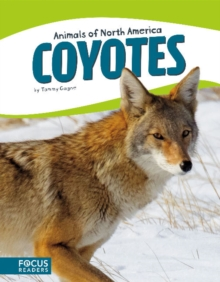 Coyotes, Paperback Book
