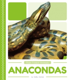 Rain Forest Animals: Anacondas, Paperback / softback Book