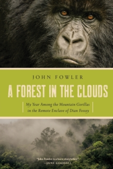 A Forest in the Clouds - My Year Among the Mountain Gorillas in the Remote Enclave of Dian Fossey, Paperback / softback Book