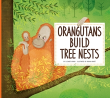 Orangutans Build Tree Nests : Animal Builders, Paperback / softback Book