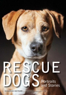 Rescue Dogs, Paperback / softback Book