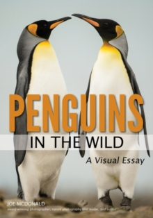 Penguins In The Wild, Paperback / softback Book