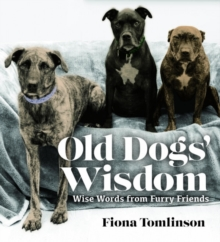 Old Dog Wisdom, Hardback Book