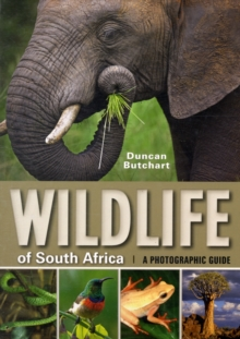 Wildlife of South Africa, Paperback / softback Book