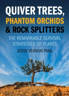 Quiver Trees, Phantom Orchids And Rock Splitters : The Remarkable Survival Strategies of Plants, Paperback / softback Book