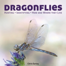 Dragonflies : Hunting - Identifying - How and Where They Live, Paperback / softback Book