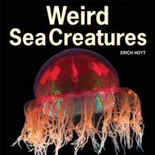 Weird Sea Creatures, Paperback Book