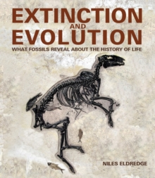 Extinction and Evolution : What Fossils Reveal About the History of Life, Hardback Book