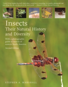 Insects : Their Natural History and Diversity, Hardback Book