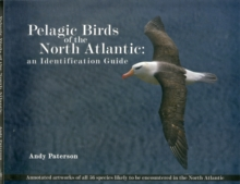 Pelagic Birds Of The North Atlantic : An Identification Guide, Paperback Book