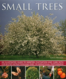 Small Trees, Paperback Book