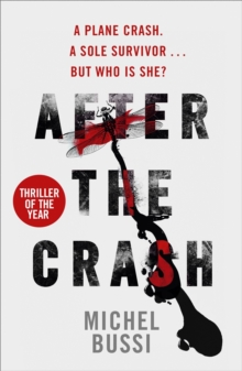 After the Crash, Paperback Book