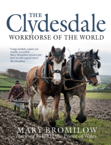 The Clydesdale : Workhorse of the World, Paperback / softback Book