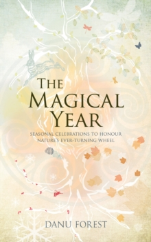 The Magical Year, Paperback / softback Book