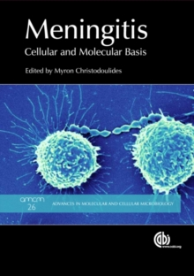 Meningitis : Cellular and Molecular Basis, Hardback Book