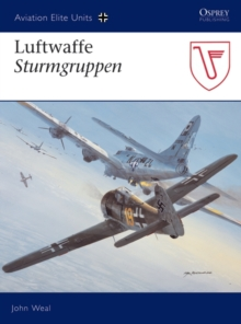 Luftwaffe Sturmgruppen, EPUB eBook