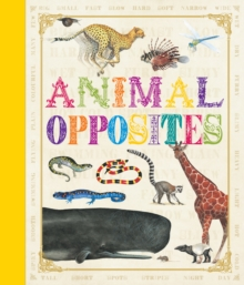 First Concept: Animal Opposites, Hardback Book
