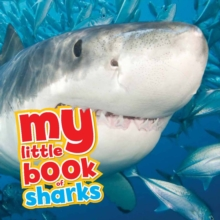 My Little Book of... Sharks, Hardback Book