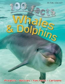 Whales and Dolphins, Paperback Book