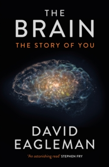 The Brain : The Story of You, Hardback Book