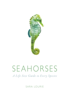 Seahorses : A Life-size Guide to Every Species, Hardback Book