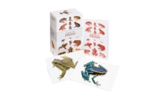 A Box of Frogs : 100 Beautiful Postcards, Postcard book or pack Book