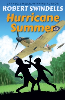HURRICANE SUMMER, Paperback Book