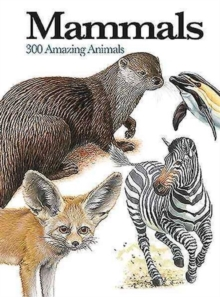 Mammals : 300 Amazing Animals, Paperback / softback Book