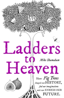 Ladders to Heaven, Hardback Book
