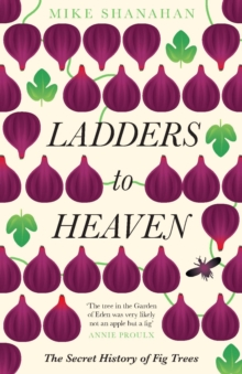 Ladders to Heaven, Paperback / softback Book