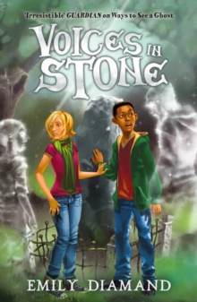 Voices in Stone, Paperback Book